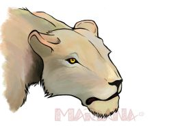 Lioness by MarianaDS