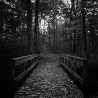 Footbridge I by jheintz21