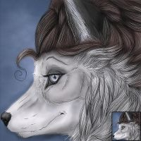 Icon - CasidheVixen by Quoosa