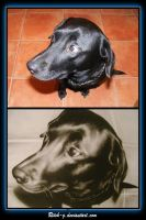 Painting of My Dog Vegas by ritch-g