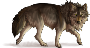 This is a wolf by Peace-Colby