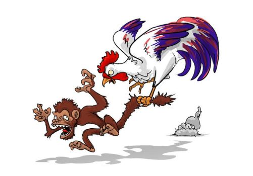 Year of the Rooster vs the Monkey by fan4battle