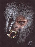 The Wolfman 001-1 copy by AndyGill1964