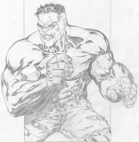 Incredible Hulk by SpiderGuile