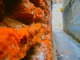 Another brick in the wall by 7ndr3y