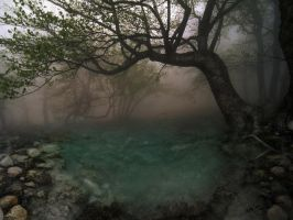 Sacred Places by ArtistsForCharity
