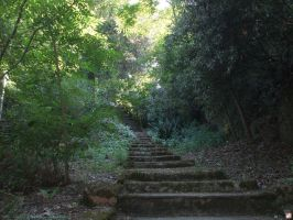 Stairs to the unknown by kawano-katsuhito