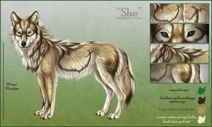'She' - charactersheet by Khalliys