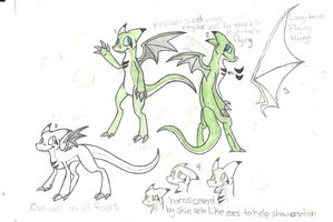 Spiral Ref Sheet by DragonCartoons