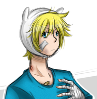 Quickie: Finn the Human by cjwolf207