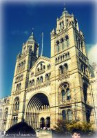 The Natural History Museum by Cherry-Cheese-Cake