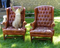 Weird Deer Head in a Chair 1 by OsorrisStock