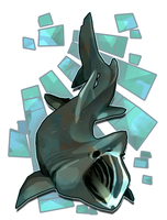 Basking Shark by Stormful