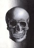The Skull by Ariel22
