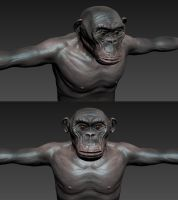 Mudbox chimp sculpt 1 by SolidAlexei
