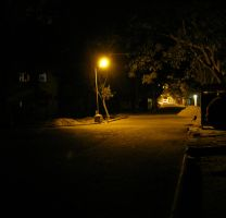 low light streetlight 2 by farazkhwaja
