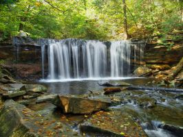 Ricketts Glen State Park 92 by Dracoart-Stock