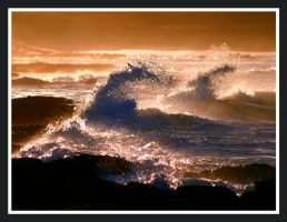 waves in gold by Buddhalassie