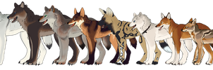 MANY DOGES by Silvadruid