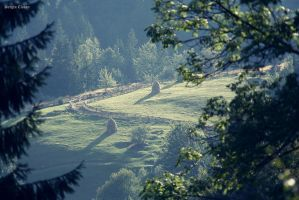 Apuseni Mountains Romania by Sssssergiu