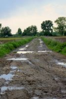wet road by jochniew