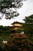 Kinkaku-ji, Kyoto, Japan by juanfigs