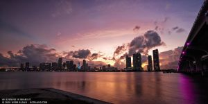 An Evening in Miami IV by also-notbland