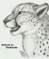 Cheetah by TheKarelia