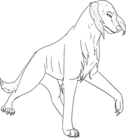 Free to use Saluki Lineart by Whitelupine