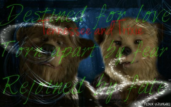 Ted Taylor Help The Bear Thank You For Helping Me See The Light