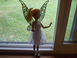 The Tink Project by SassyPheonix