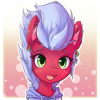 Melon Frost - portrait commission by t-Hoodie