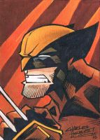 Wolverine sketch card by KidNotorious