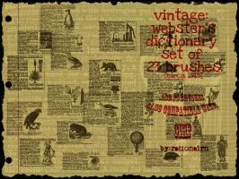 vintage websters dictionary brushes by rationalrn