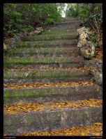 stone stairway by Obsidian133