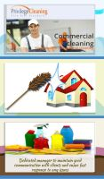 Carpet steam clean canberra by Julliacarry