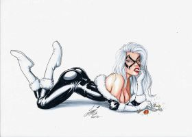 BLACK CAT by HM1 by HM1art