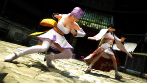 Ayane VS Kokoro by James--C