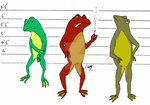 Frog ID by The-Episiarch