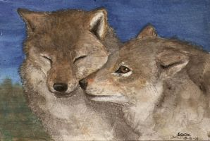 two wolves by Liedeke