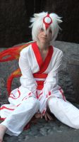 AX '10 - Amaterasu 01 by SensoOokami