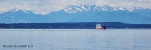 Panorama of Olympic Peninsula and Puget Sound by SilentMobster42