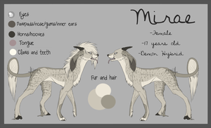 Mirae REF SHEET by Cannidae