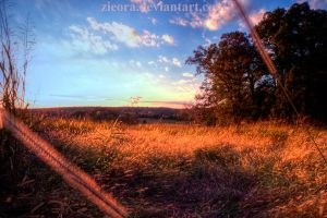 Meadow at Sundown by zieora