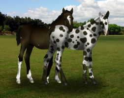 The New Foals by S1oane