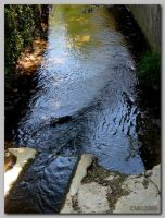 Rivulet_Of_Never_Return by cmg2901