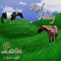 Holly - Breeding to Red by painted-cowgirl
