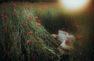silent evenings by laura-makabresku