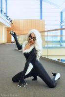 Black Cat: Diamond Heist by MomoKurumi