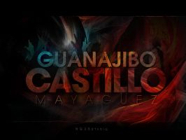 Guanajibo Castillo-Mi Barrio by NG25Lab